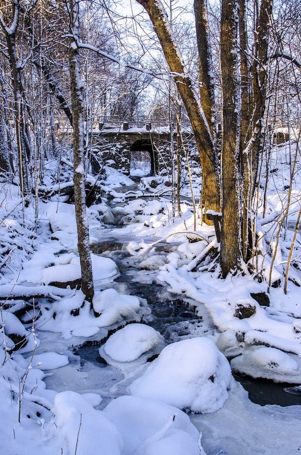 Espoonkartano im Winter lizenzfreie stockfotografie