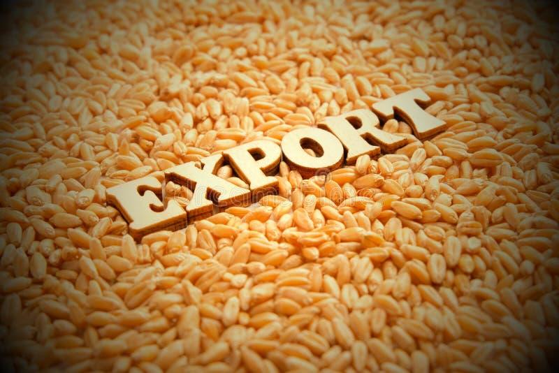 Esportazione di grano Lettere di legno sui precedenti dei grani del grano Vignettatura, tonificante Alto rendimento Relazioni eco immagine stock