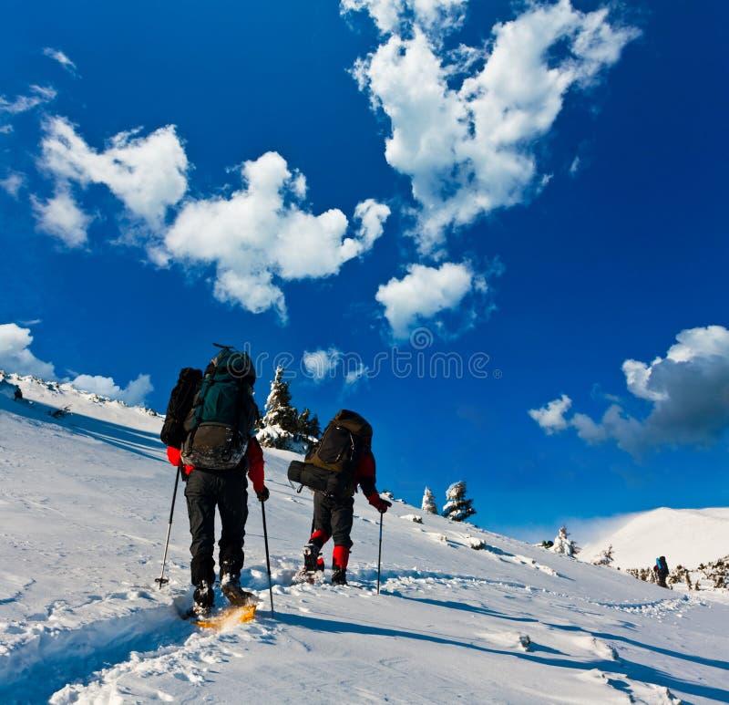 Esporte de inverno fotografia de stock royalty free