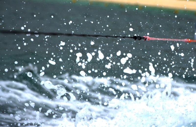 Esportes de água da corda fotos de stock