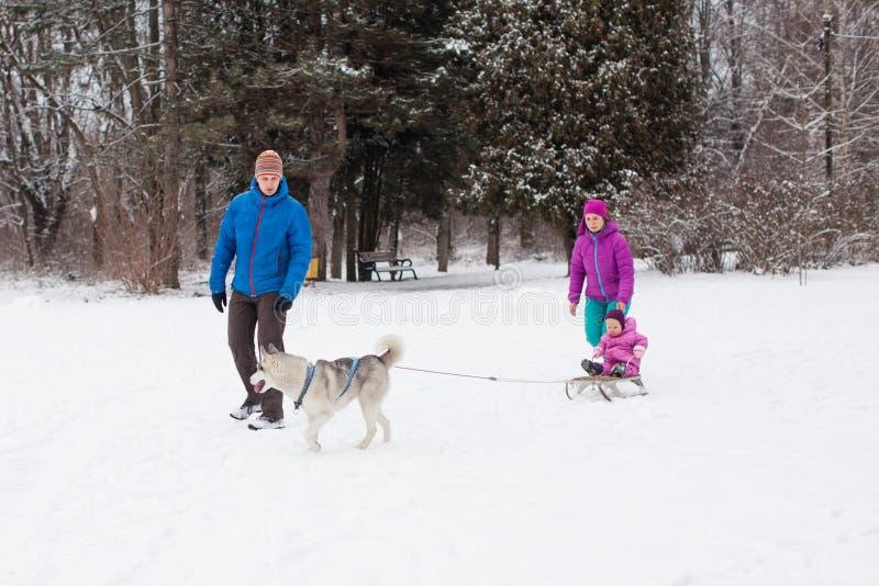 Esportes de inverno da família fotos de stock