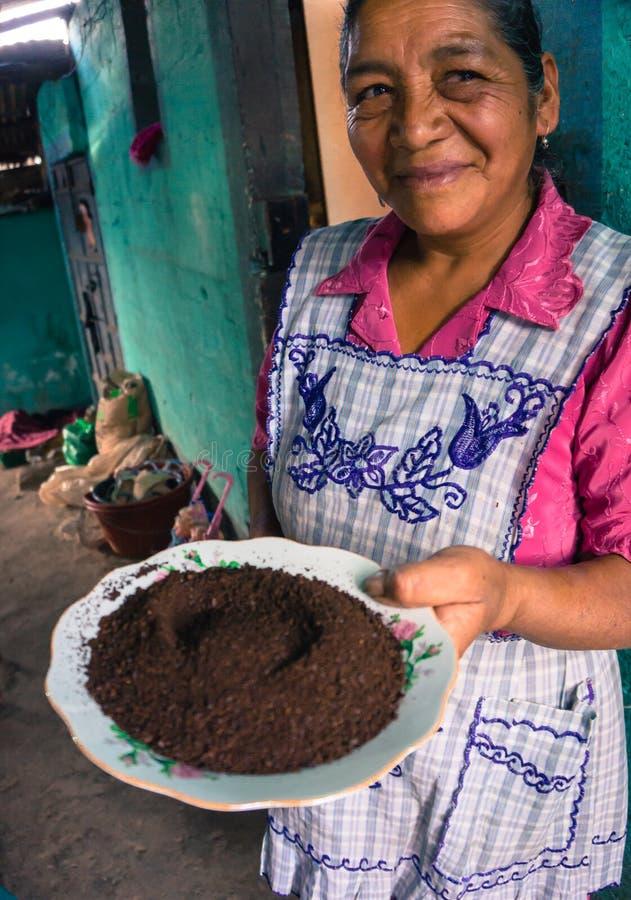 Esposa do fazendeiro guatemalteco do café com café à terra imagens de stock royalty free