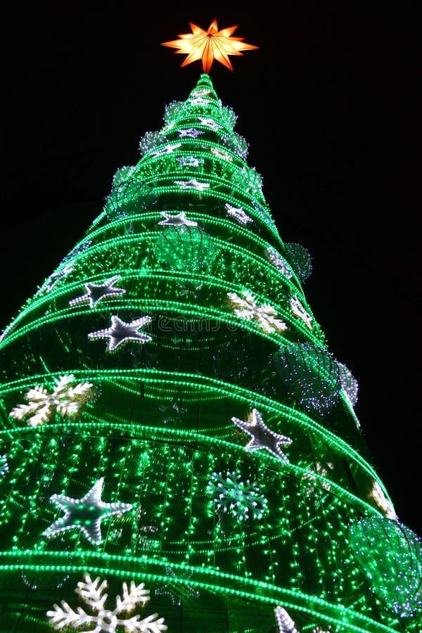 Esposizione decorativa delle luci di Natale di inverno dell'albero di Natale fotografie stock libere da diritti