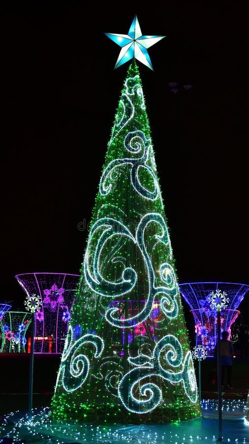 Esposizione decorativa delle luci di Natale di inverno dell'albero di Natale fotografia stock libera da diritti
