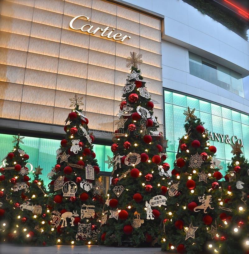 Esposizione degli alberi di Natale immagine stock