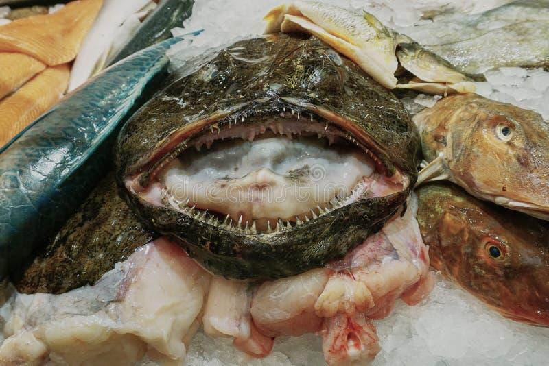 Esposizione dei frutti di mare con il monaco sorridente Fish immagini stock