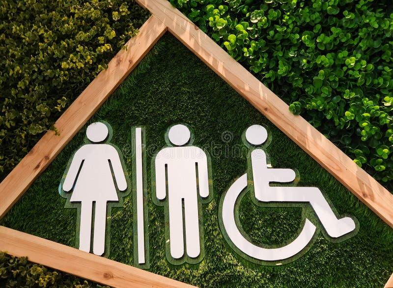 Esposizione dei segni maschii, femminili e disabili della toilette immagine stock libera da diritti
