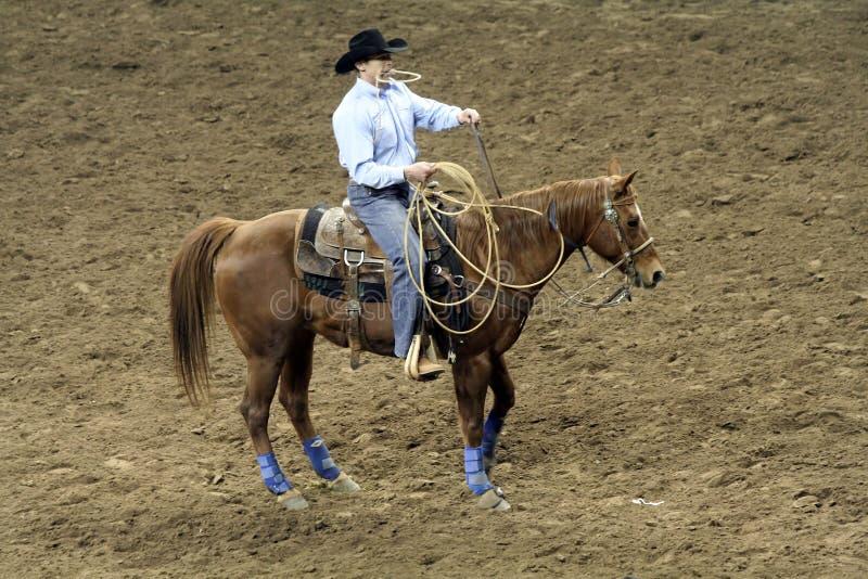 Esposizione di riserva occidentale nazionale - rodeo immagini stock