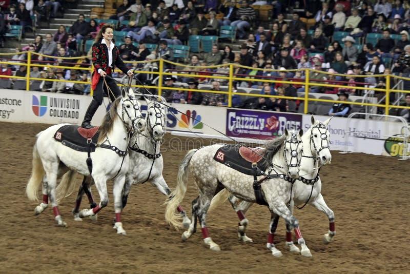 Esposizione di riserva occidentale nazionale - rodeo messicano fotografia stock