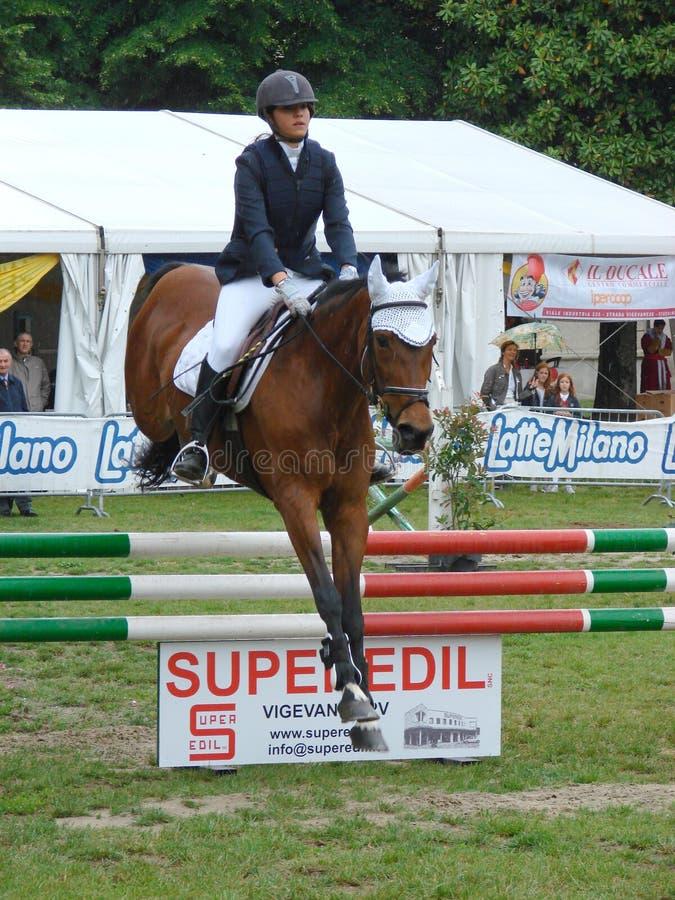 Esposizione di salto del cavallo immagini stock