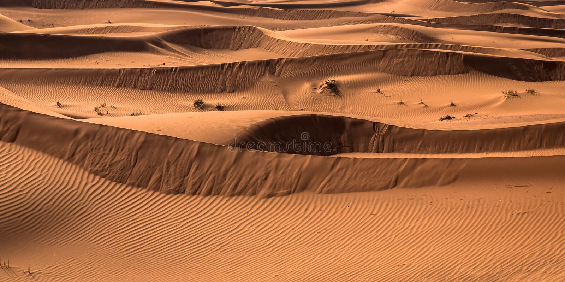 Esposizione di tramonto del deserto vicino al Dubai, Emirati Arabi Uniti immagine stock libera da diritti