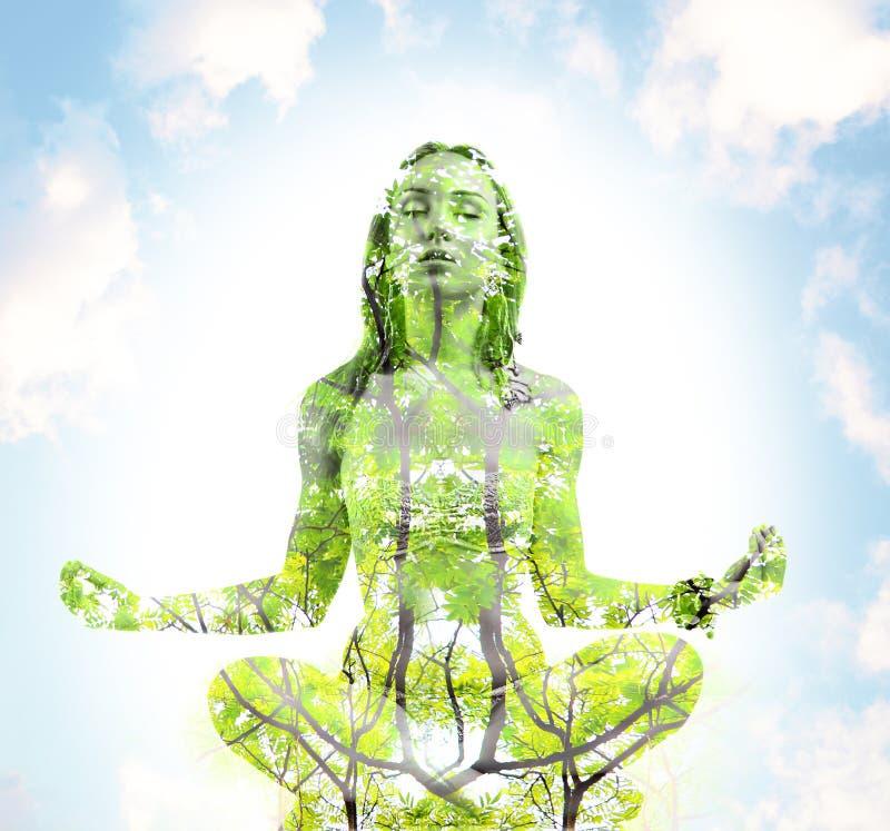 Esposizione di yoga di forma fisica doppia fotografia stock