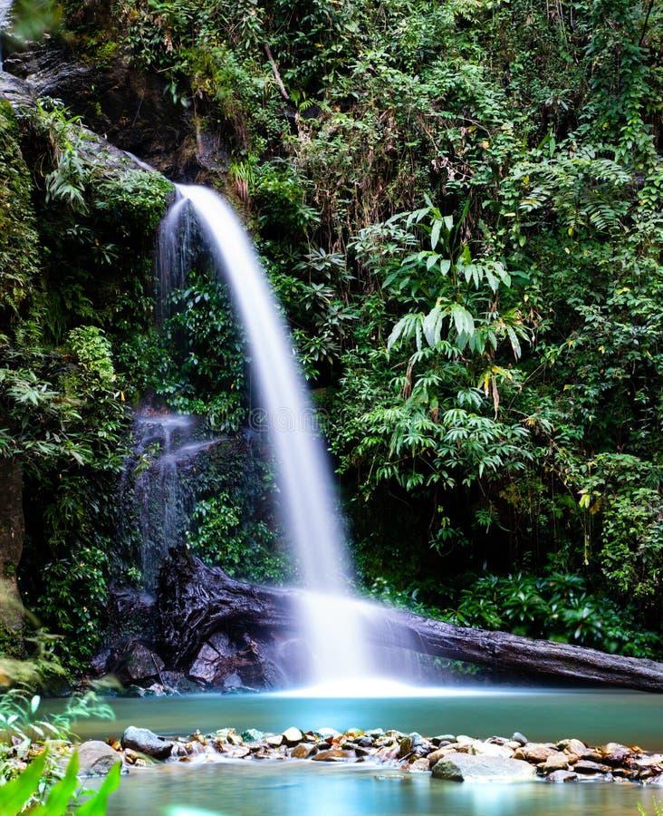 Esposizione lunga della cascata di Montathan nella giungla di Chiang Mai Thailand fotografia stock libera da diritti