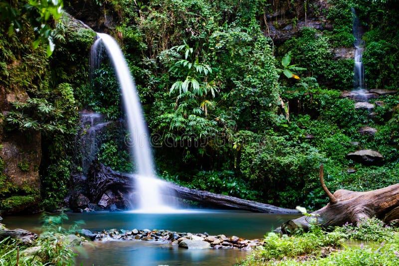 Esposizione lunga della cascata di Montathan nella giungla di Chiang Mai Thailand fotografia stock
