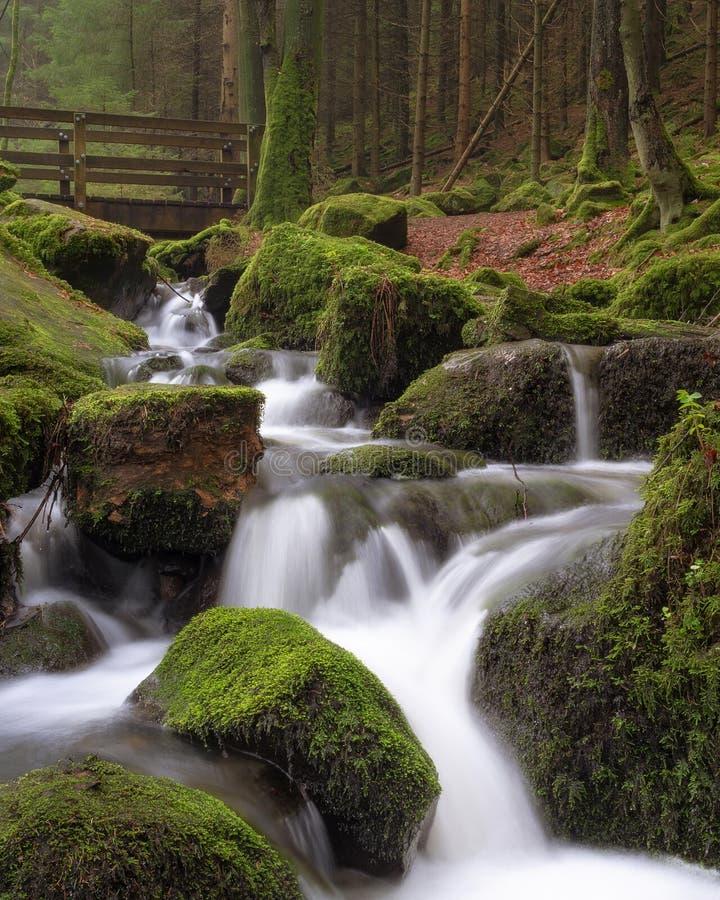 Esposizione lunga della corrente della foresta di Teutoburg immagini stock libere da diritti