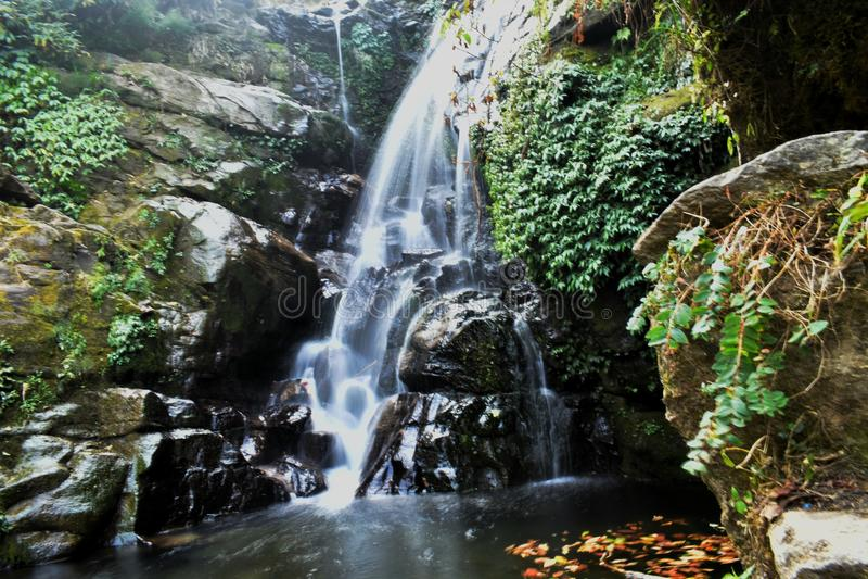 Esposizione lunga sparata di una cascata in Rockgarden, Darjeeling immagine stock libera da diritti