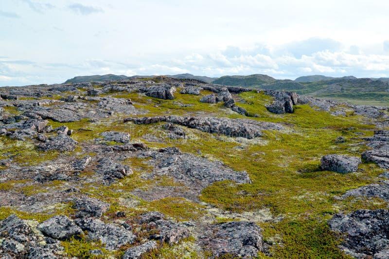 Esposizioni del granito su un pendio della collina La Russia immagini stock