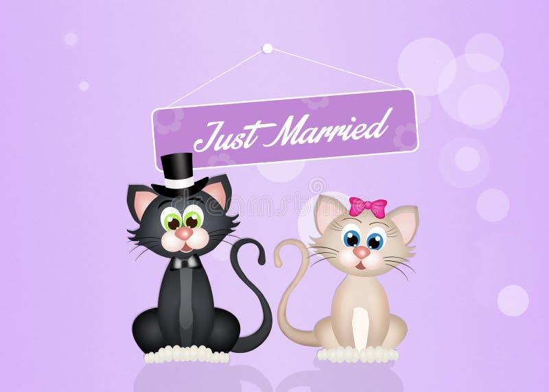 Esposos dos gatos ilustração royalty free