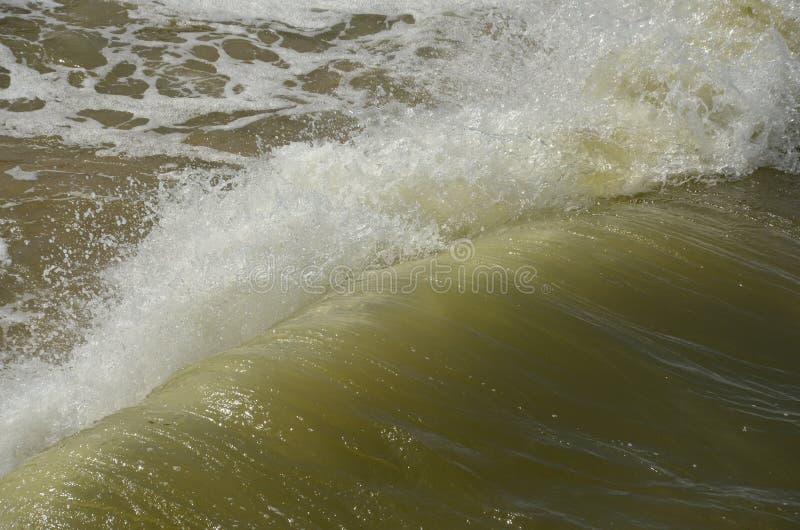 Espray frío del mar Báltico en Rusia, Zelenogradsk fotos de archivo
