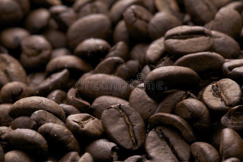 espresso φασολιών caffe coffe στοκ εικόνες με δικαίωμα ελεύθερης χρήσης