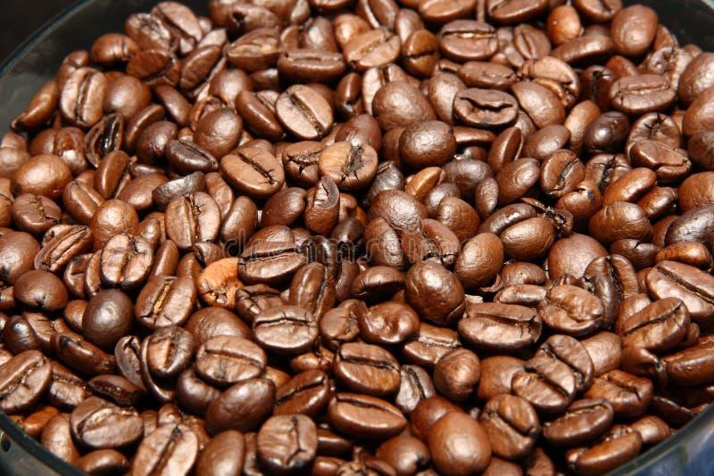 Download Espresso Royalty Free Stock Photo - Image: 16860065