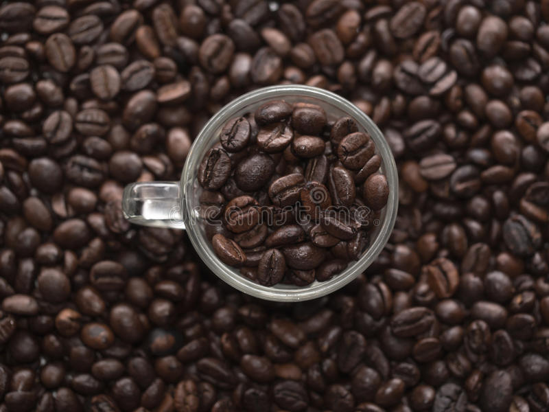Espresso cup full of coffee beans royalty free stock photos