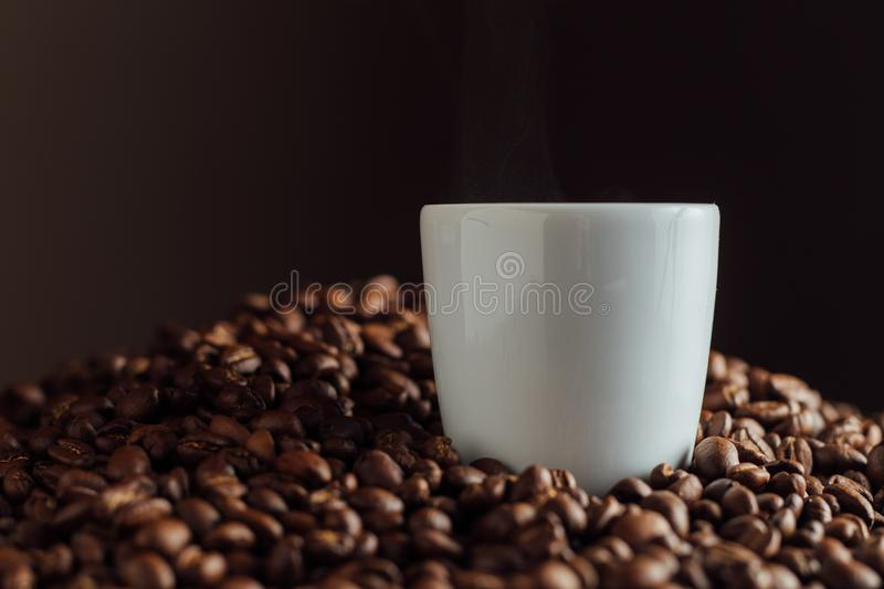 Espresso cup full of coffee on the grains pile. Italian traditional morning short drink on breakfast. Close-up. Toned royalty free stock images