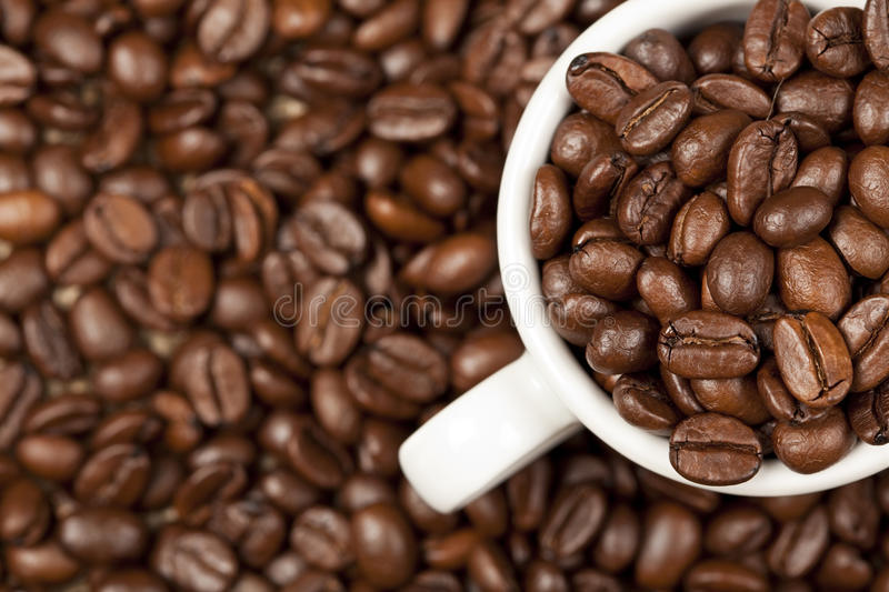 Espresso cup full with roasted coffee beans royalty free stock photos