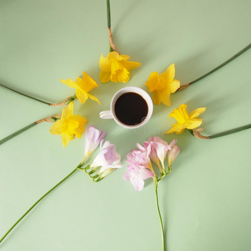Espresso with flowers. On a green background stock photography