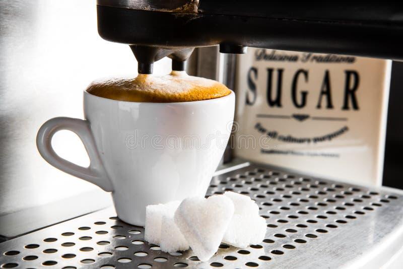 Espressoförberedelse, royaltyfri bild