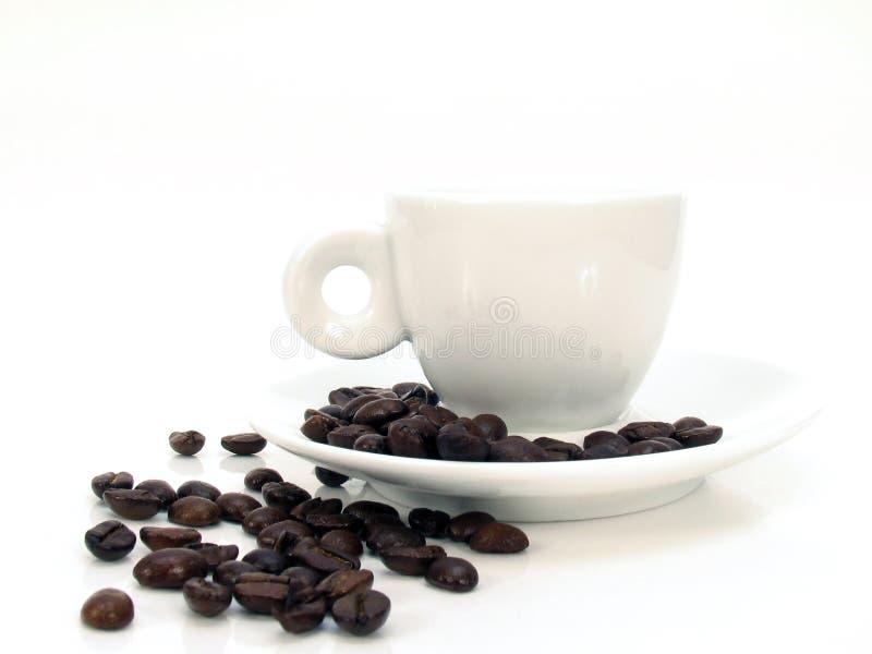 espressowhite för 2 kopp royaltyfria bilder