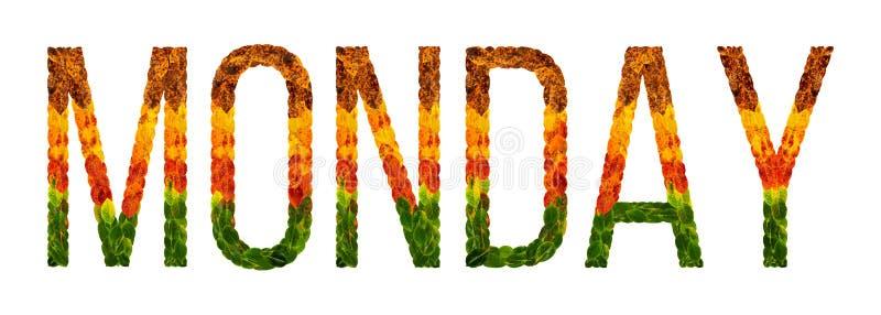 Esprima lunedì scritto con il fondo isolato bianco delle foglie, insegna per la stampa, illustrazione creativa delle foglie color royalty illustrazione gratis