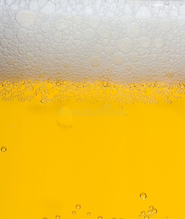 Espuma da cerveja foto de stock royalty free