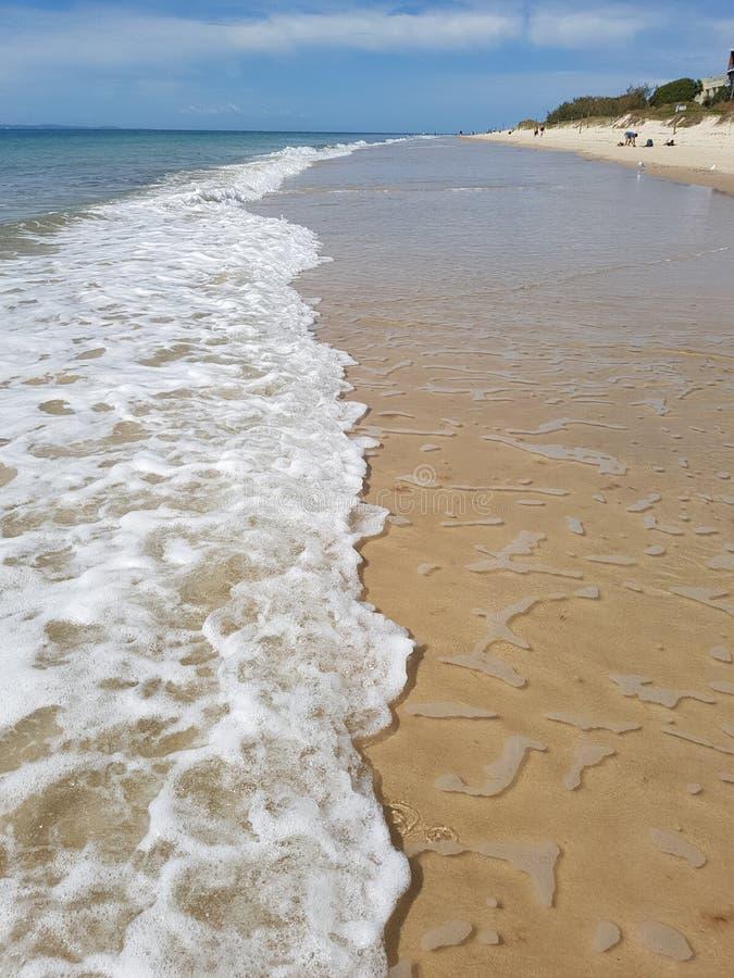 Espuma da praia na ilha do bribie fotografia de stock royalty free