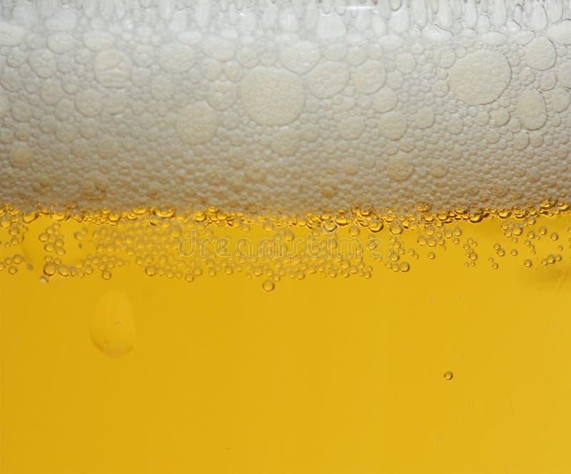 Espuma de la cerveza, fondo foto de archivo libre de regalías