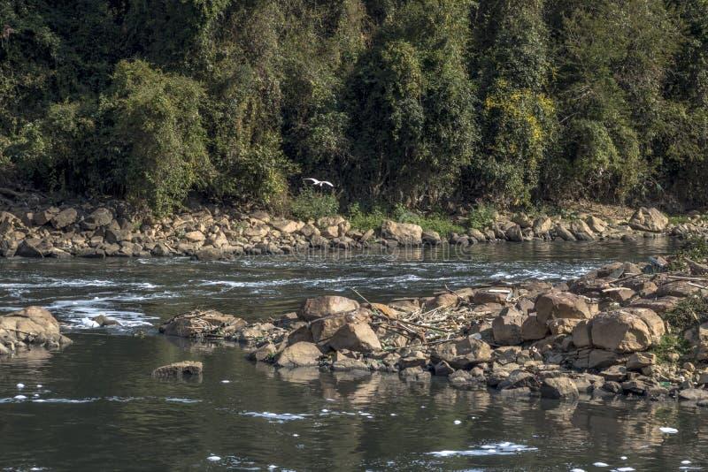 Espuma de la contaminación en el río de Tiete imagen de archivo libre de regalías