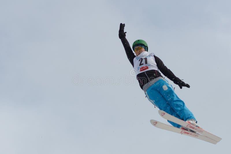 Esquí aéreo imágenes de archivo libres de regalías