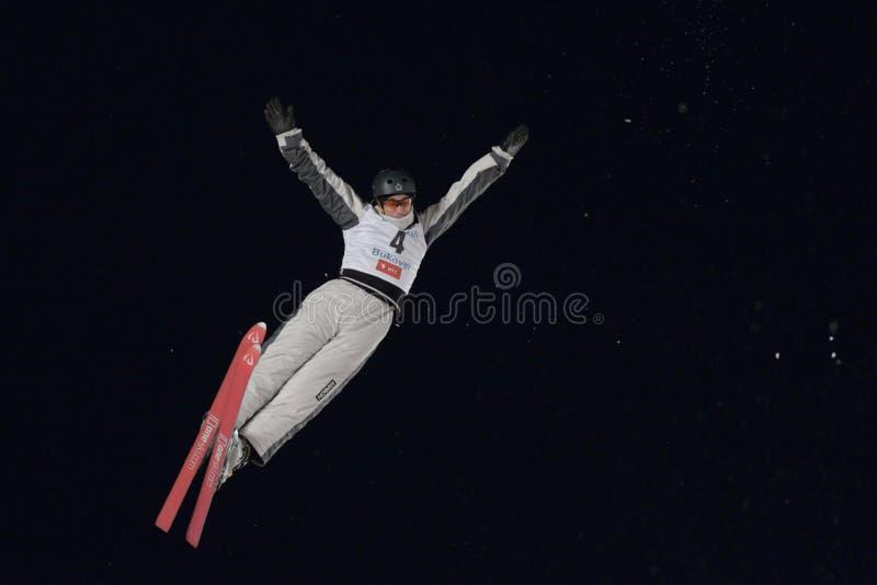 Esquí aéreo fotografía de archivo libre de regalías