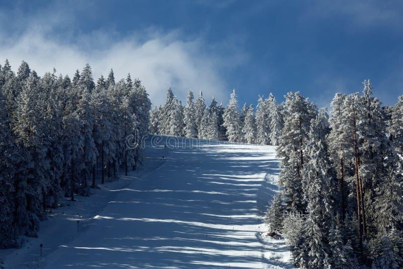 Esquí alpino, plumón rápido que va la montaña, deporte de invierno foto de archivo