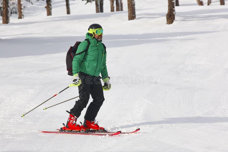 Esquí en un paisaje hermoso del bosque de la nieve Deporte de invierno fotografía de archivo
