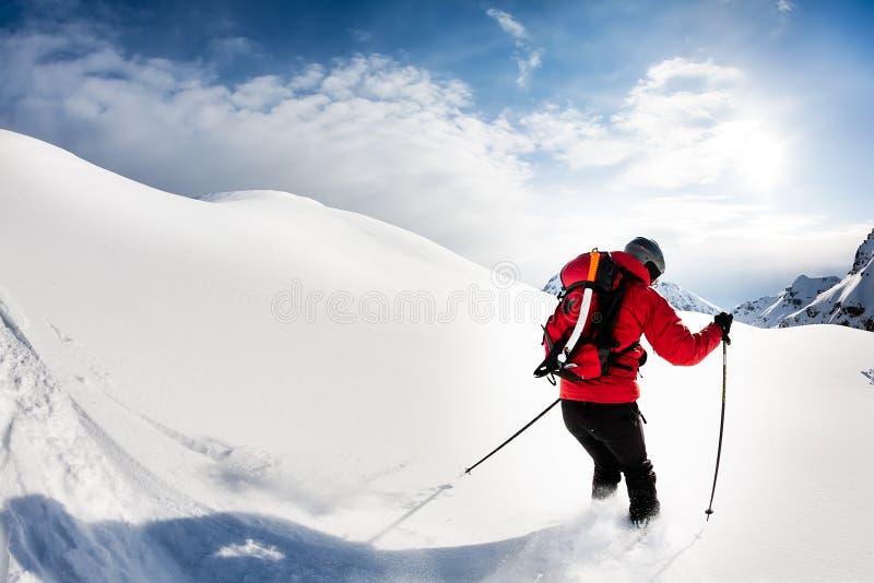 Esquí: esquiador de sexo masculino en nieve del polvo imagen de archivo