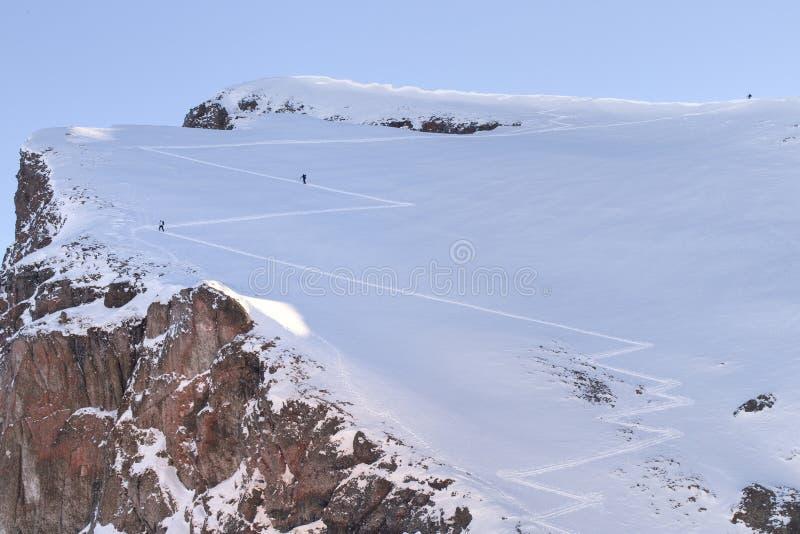 Esquí, esquiador, Freeride en nieve fresca del polvo fotos de archivo