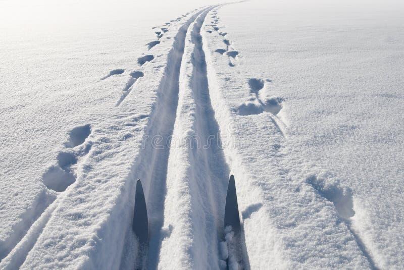 Esquí, nieve y pista fotos de archivo libres de regalías
