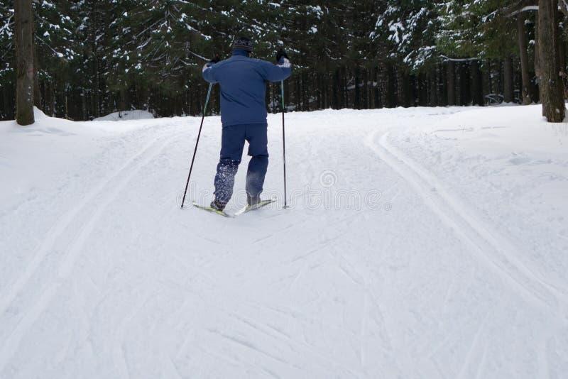 Esquí, par en la naturaleza blanca del invierno Un atleta profesional en el curso fotografía de archivo libre de regalías