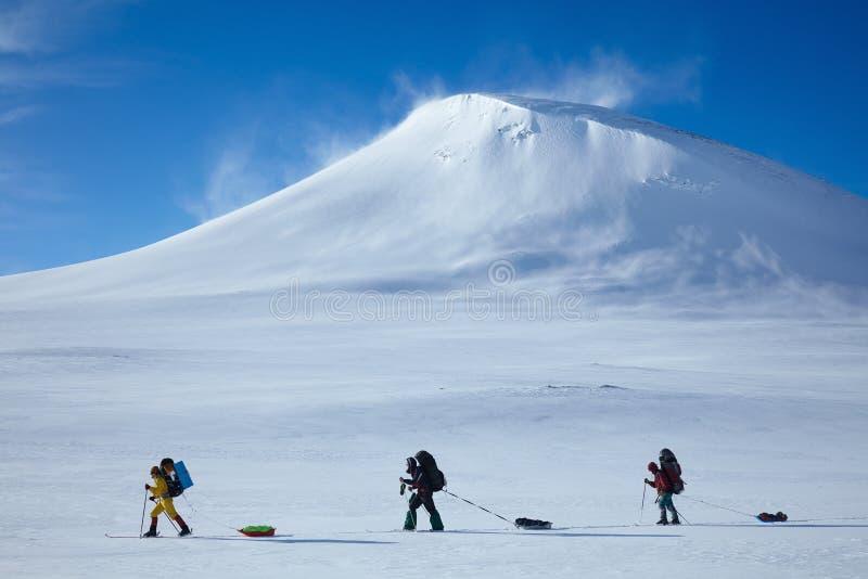 Esquí que viaja al grupo con pulkas de las mochilas y de los trineos imagen de archivo