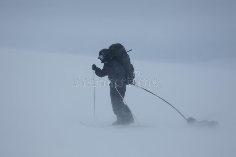 Esquí que viaja al hombre con el trineo en mún tiempo fotografía de archivo