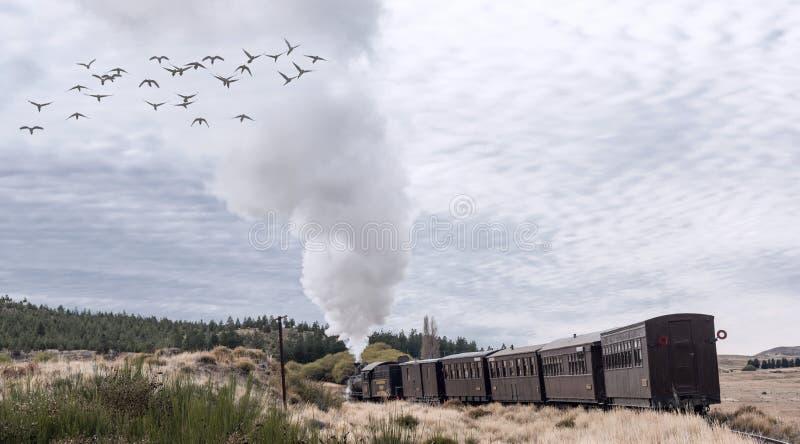La Trochita Old Patagonian Express, using steam locomotives stock image