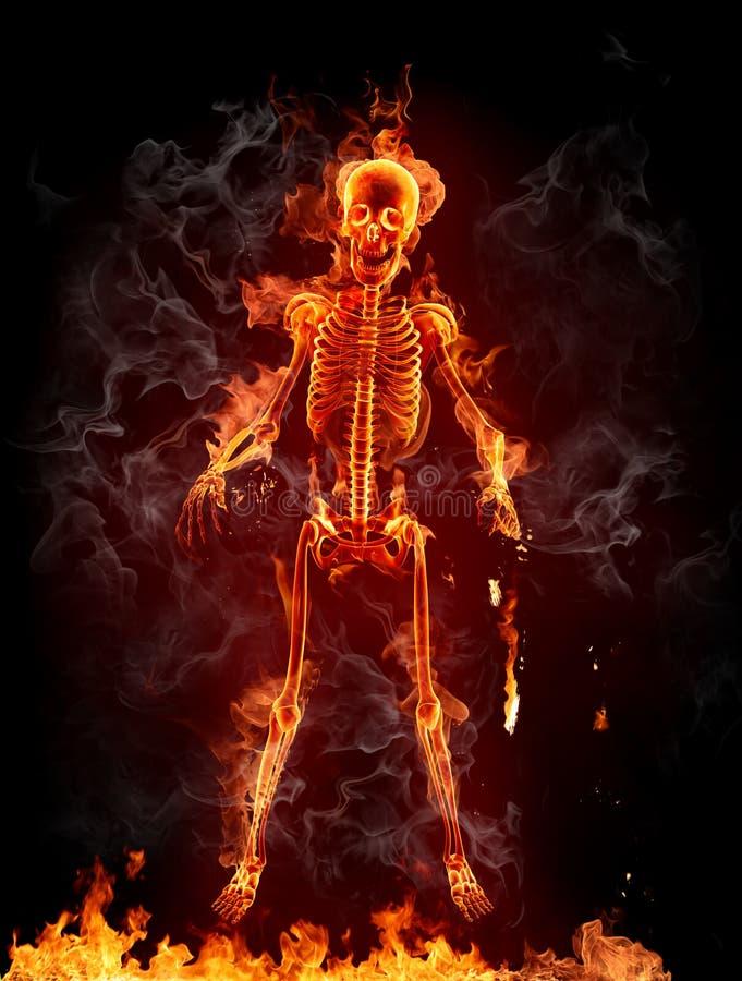 Esqueleto ilustração stock
