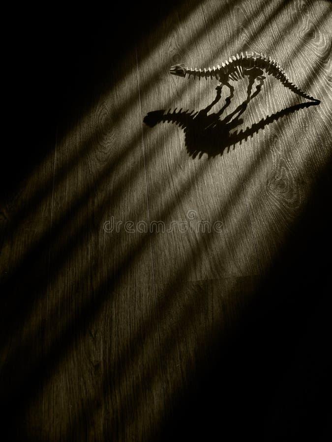 Esqueleto asustadizo del dinosaurio en sitio oscuro fotografía de archivo