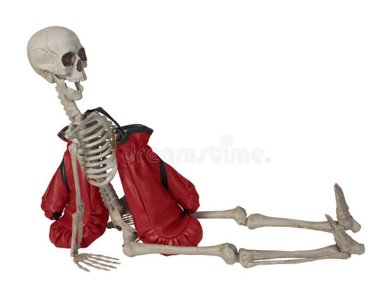 Esqueleto com luvas de encaixotamento imagens de stock royalty free
